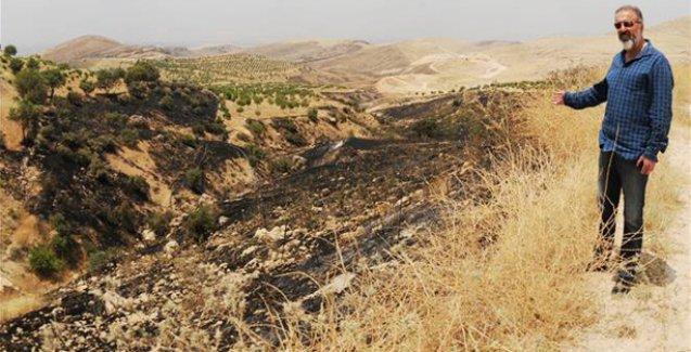 Deyrulzafaran Süryani Manastırı etrafındaki yüzlerce ağaç yakıldı