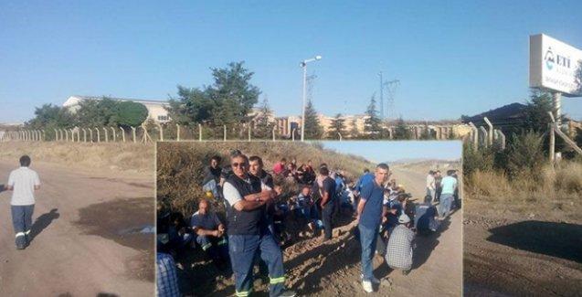 Cengiz Holding'in işyerinde grev