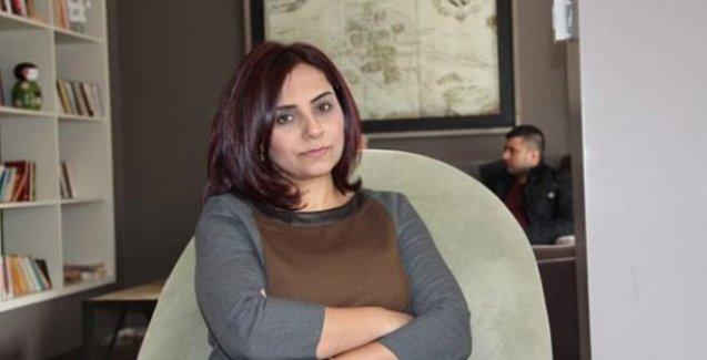 CHP'li Selina Doğan: Erdoğan'la ilk karşılaştığımızda 'Özür dilerim, ben Ermeniyim' diyeceğim