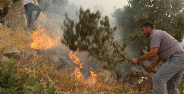 Cudi Dağı'nda TSK'nın neden olduğu yangın için 'yetkililerin kılı kıpırdamıyor'