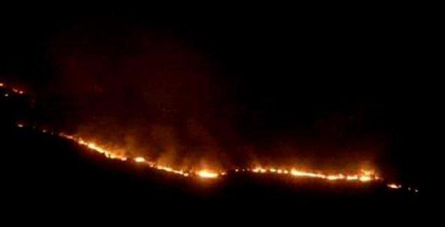 Cudi Dağı'ndaki ormanlık alanda yangın!