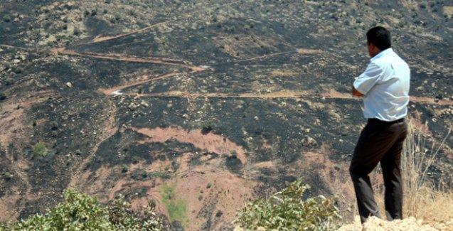 Cudi'de yüzlerce hektarlık alan kül oldu