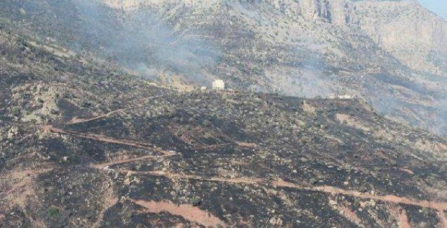 Cudi hala yanıyor: Yangının yayılmaması için hendekler kazılıyor