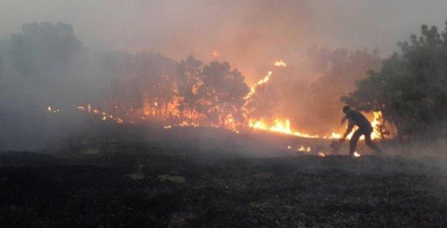 Lice'de askerin neden olduğu yangın kontrol altına alındı