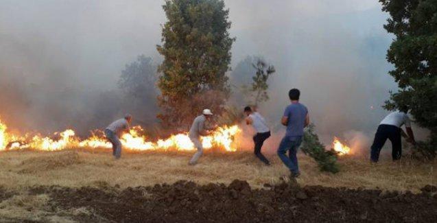 Lice'de orman yangını: Halk seferber olup söndürdü