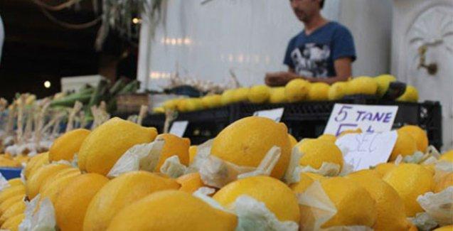 Limonun kilosu 10 TL'ye kadar yükseldi