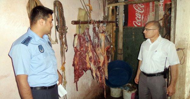 Mersin'de 50 kilo at eti ele geçirildi