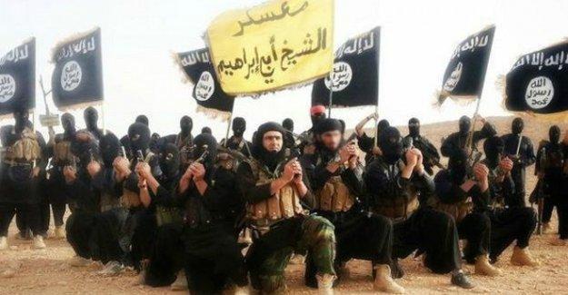 Observer: Türkiye-IŞİD ilişkisi belgeleri ABD'nin elinde