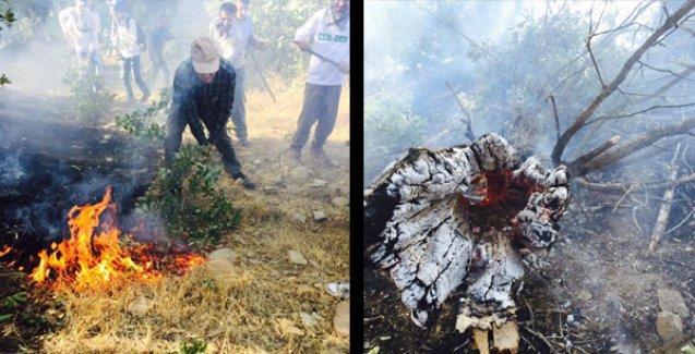 Silopi İtfaiyesi Müdürü soruyor: Neden Cudi'deki yangına helikopterle müdahale edilmiyor?