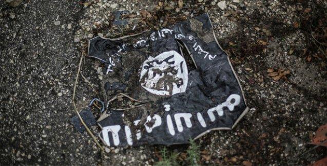 Suriye ordusu ve YPG, IŞİD'i Haseke'den çıkardı