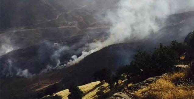 'Cudi'deki ormanlık alan Ciner Grubu'na yeni kömür havzaları açmak için mi yakıldı?'
