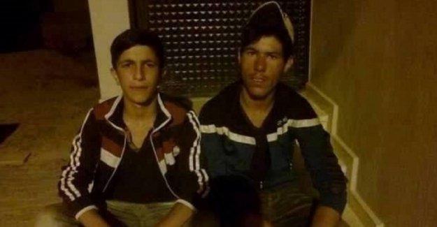 HDP'li Taşdemir: Diyadin'de özel timler iki çocuğu infaz etti