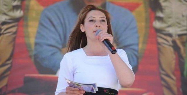 Cizre Belediyesi Eş Başkanı İmret'in göreve iadesi için dava açıldı