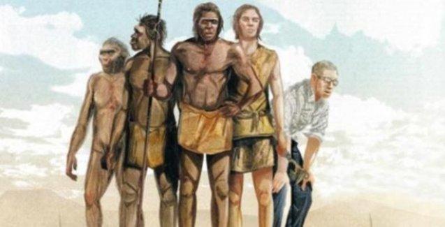 Güney Afrika'da yeni bir insan türü keşfedildi