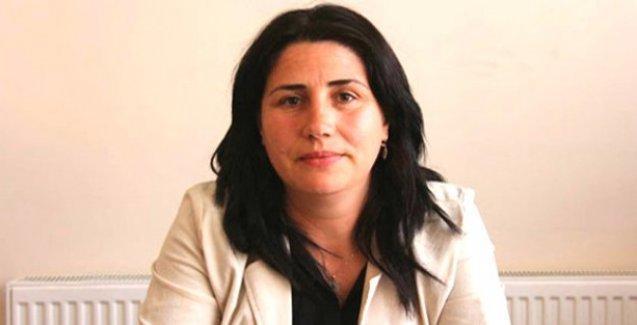 HDP'li Özanlı'dan o iddialara yanıt: Gıda maddeleri barış çadırı içindi
