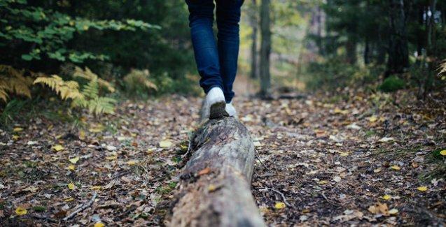 Doğada 2 saat geçirmek bile görme bozukluğunun tedavisi olabilir