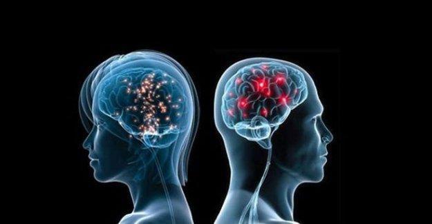 Erkek ve kadın beyni arasındaki tek fark