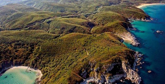 Ethem Sancak'ın  TOMA'ları longoz ormanında üretilecek