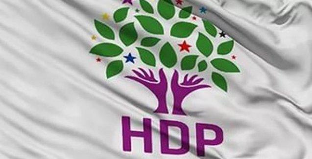 HDP, Paris katliamını kınadı