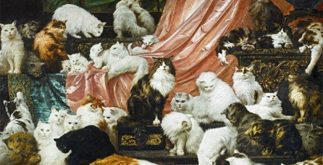 42 kedili 'Dünyanın en büyük kedi tablosu' binlerce dolara satılacak