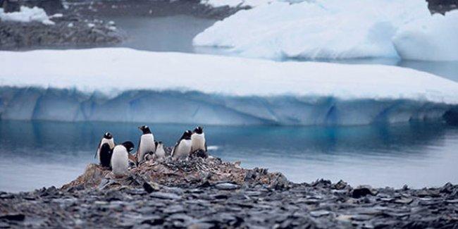 BM İklim Konferansı: Taslak sonuç metninde uzlaşıldı