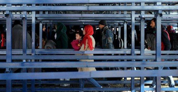 Hollanda: Çocuklar 'mültecilerden korunacak'