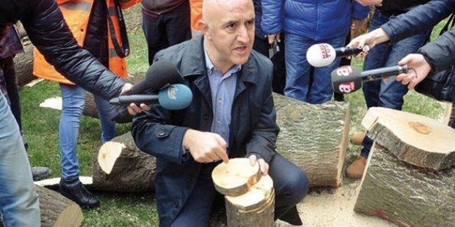 İstanbul'da 1300 ağaç kesilecek