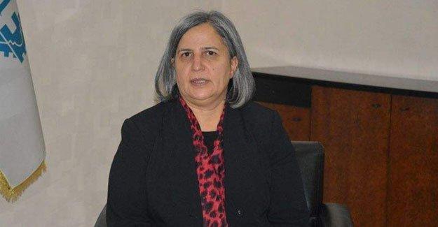 Gülten Kışanak Sur için alınan kamulaştırma kararını eleştirdi