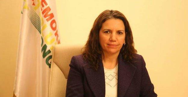 Selma Irmak: Nefes alan her canlı hedef haline getirilmiş durumda