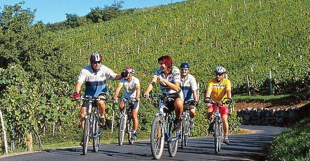 Almanya'da tamamen bisikletlere özel 100 km yol