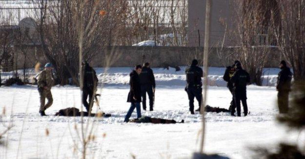 Van'da 12 gencin öldürülmesi: Çatışma izi yok