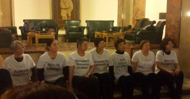İnsan hakları savunucusu 7 kadından Meclis'te barış çağrısı