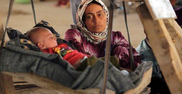 'IŞİD'den kurtulan Ezidi kadınlar, bekaret testine zorlanıyor'