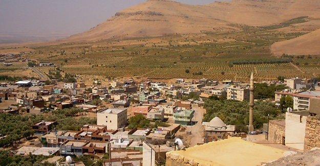 DİHA: Derik'te bir genç öldürüldü