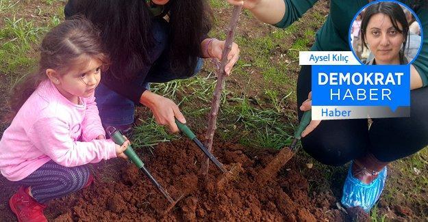 Diyarbakır'da ağaç dikip, savaşta hayatlarını kaybeden çocuklara adadılar