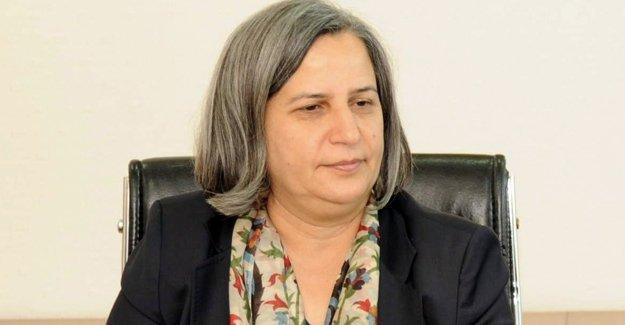 Kışanak: Sur'daki abluka 24 saatliğine kaldırılsın