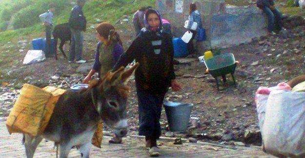 Köyündeki su sıkıntısı Ardahanlı muhtarı 'utandırıyor'