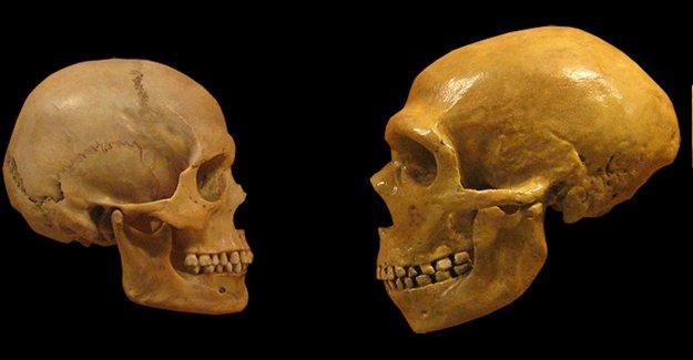 Modern insan ve Neandertal ne zaman çiftleşti?