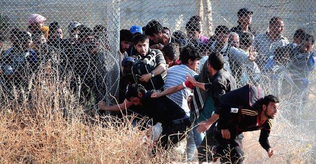 Times: 'Türkler, göçmenler sınırı geçerken onları vurarak öldürüyor'