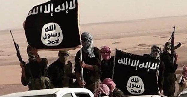 IŞİD'in kaçırdığı işçiler serbest bırakıldı