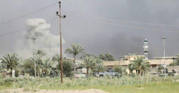 Irak ordusu, Felluce'yi IŞİD'den tamamen kurtardı; yeni hedef Musul