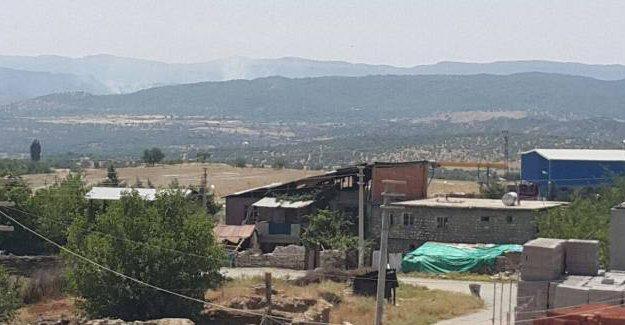 Fatih Polat 'Lice' izlenimlerini yazdı: Bildik argüman; uyuşturucu ile mücadele