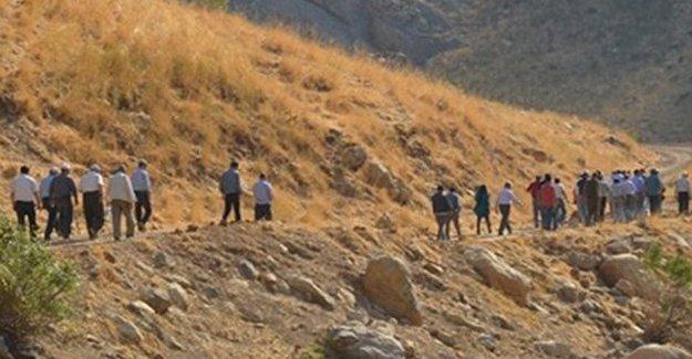 Lice'de gözaltına alınan 37 canlı kalkan serbest