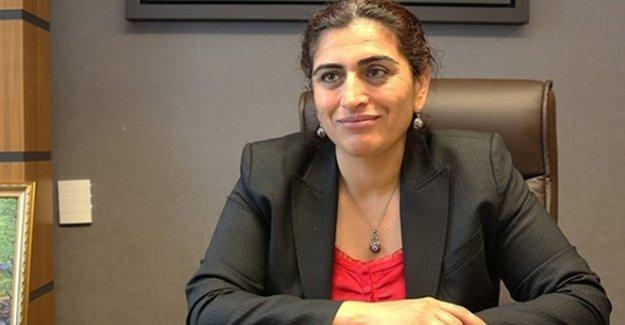 Sebahat Tuncel: Türkiye'nin komşusu Kürdistan olacak