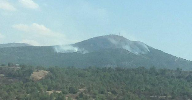 Nurcan Baysal: Lice 1925'ten beri defalarca yakıldı