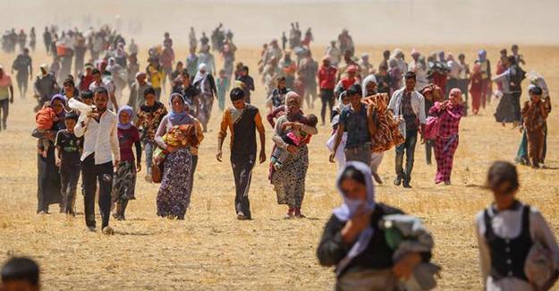 BM: Ezidi soykırımı sürüyor