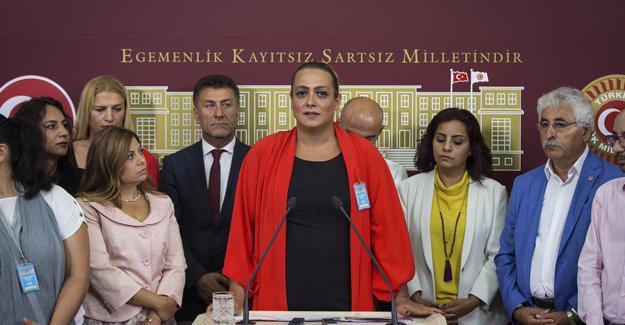 CHP, LGBTİ'lerle Meclis'te açıklama yaptı