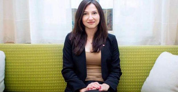 İsveçli bakan istifa etti: Alkollü araç kullanmam hayatımın hatasıydı