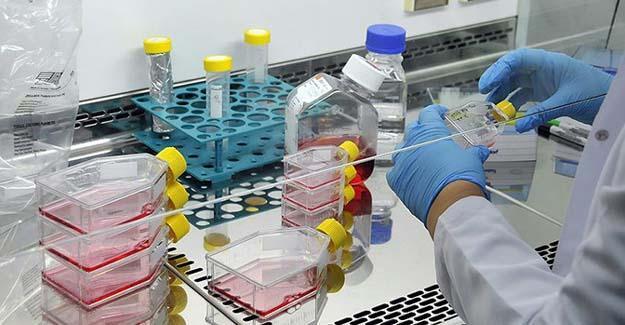 Kansere karşı yeni tedavi yöntemleri