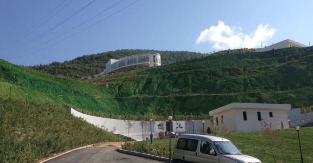 Açılışa kadar yeşillendiremedikleri alanı yeşile boyadılar